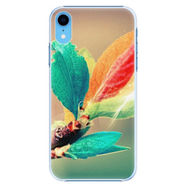 Plastové pouzdro iSaprio - Autumn 02 - iPhone XR