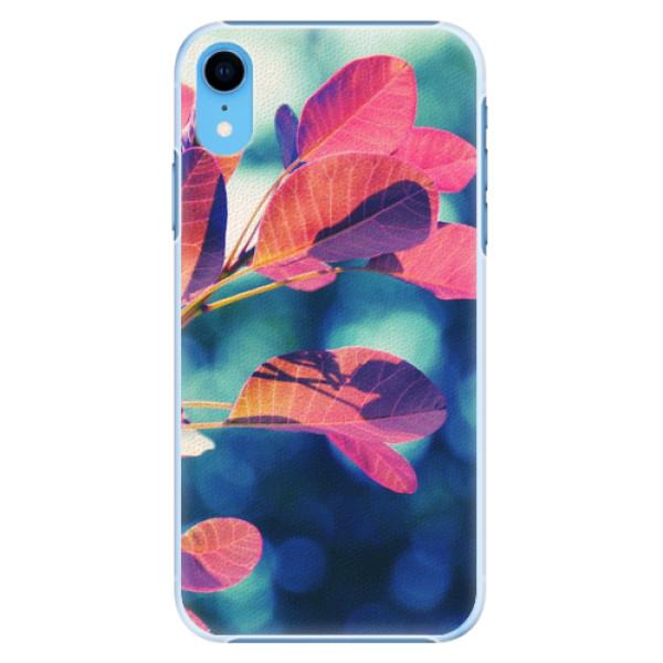 Plastové pouzdro iSaprio - Autumn 01 - iPhone XR