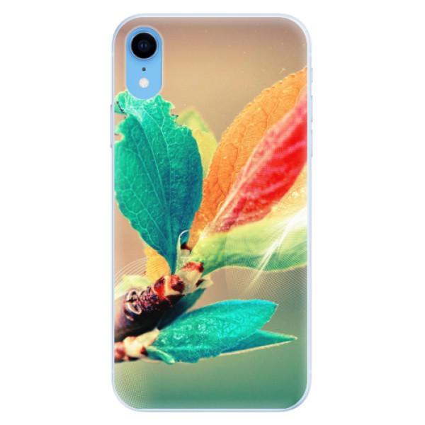 Silikonové pouzdro iSaprio - Autumn 02 - iPhone XR