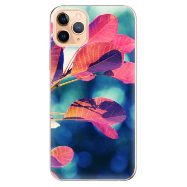 Odolné silikonové pouzdro iSaprio - Autumn 01 - iPhone 11 Pro Max