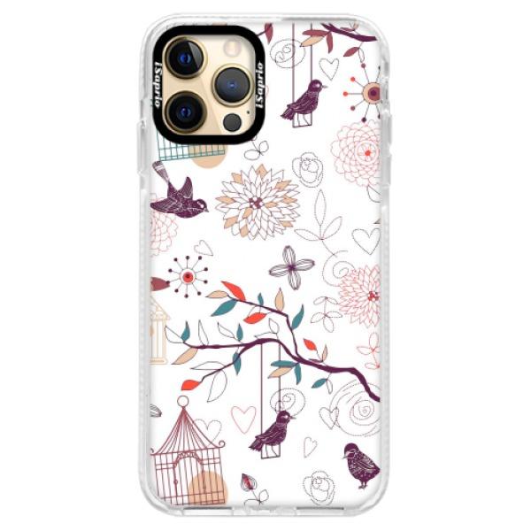 Silikonové pouzdro Bumper iSaprio - Birds - iPhone 12 Pro